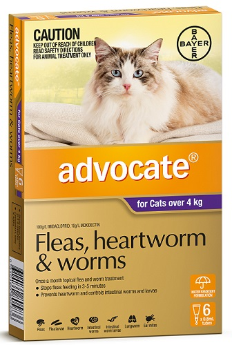 Advocate Flea Heartworm And Worm Treatment For Cats 4kg